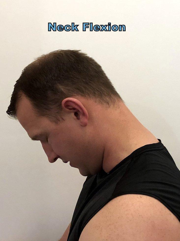 flexion portland chiropractor